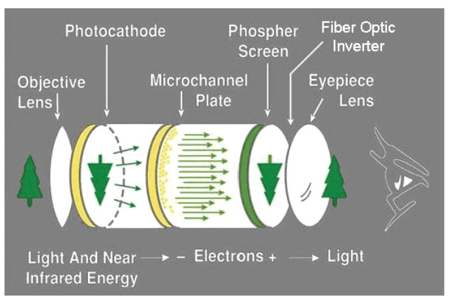 A simplified view of how the electronics of night vision provide image intensification